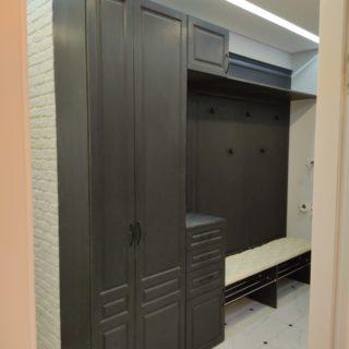 Шкаф классический Ш-57