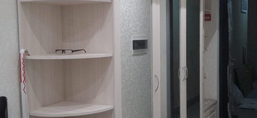 Шкаф классический Ш-37